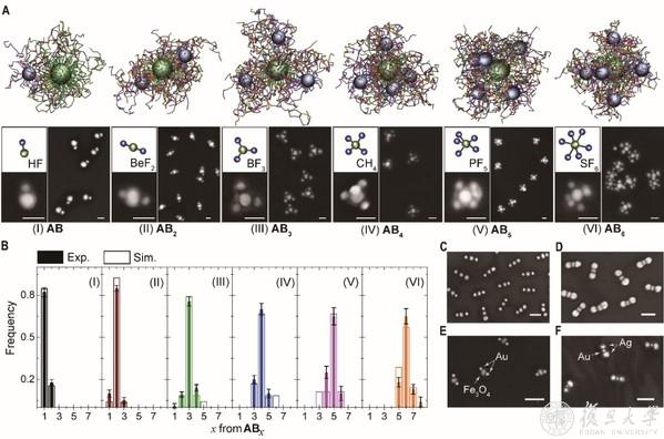 """研究团队设计纳米""""人造分子""""简易制备方法,为新型复合材料制备开创新路线"""