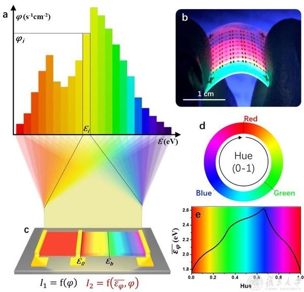 图1. 柔性带隙递变钙钛矿器件的荧光照片及其对光谱/颜色进行感知的示意图